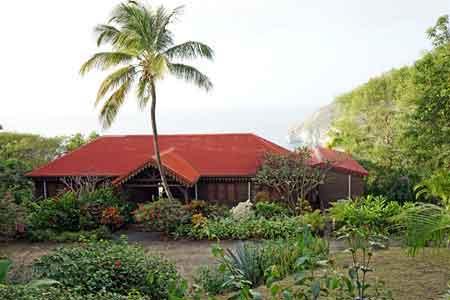Guadeloupe jardin botanique deshaies antilles coluche for Au jardin des colibris guadeloupe
