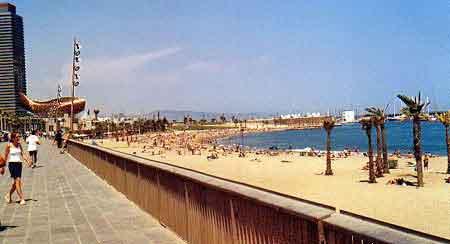 Barcelone barceloneta quartier populaire port olympique - Restaurant l huitre y est port des barques ...