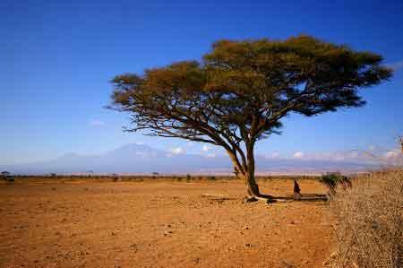 Kenya Masai  village