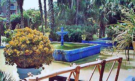 visite du jardin de majorelle marrakech informations et photos. Black Bedroom Furniture Sets. Home Design Ideas