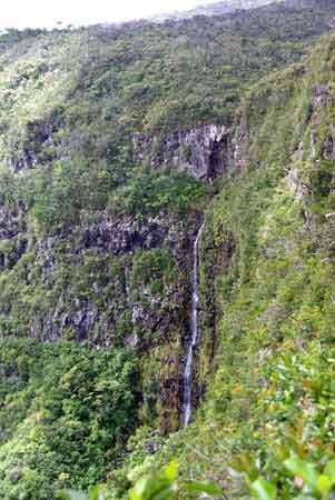 parc-naturel-de-la-riviere-noire-ile-maurice